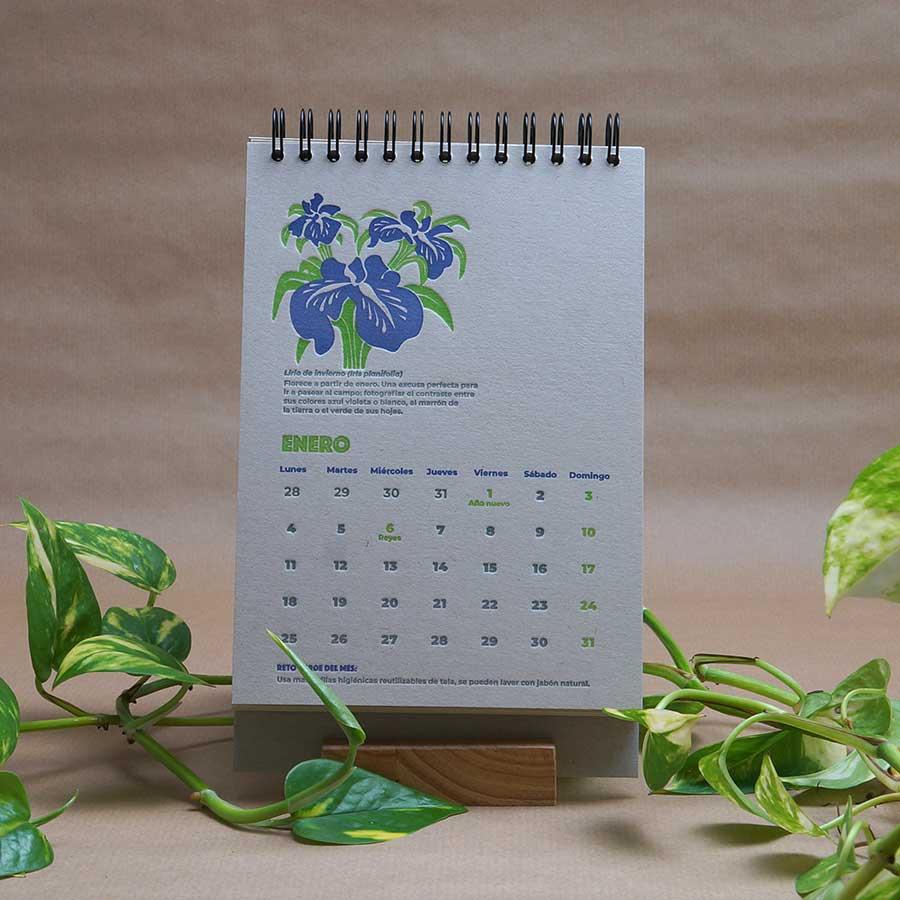 Página interior del calendario letterpress 2021, este año dedicado al medio ambiente, con curiosidades naturalistas y retos medioambientales. Lirios de invierno del mes de enereo