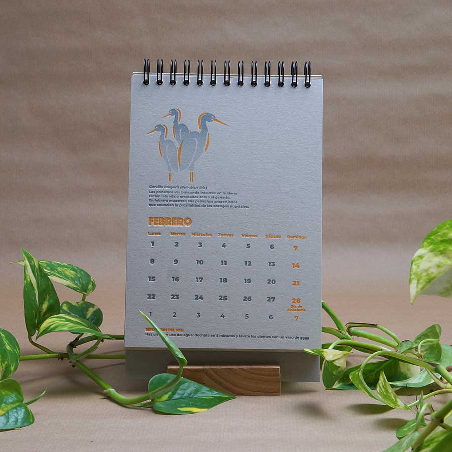 Página interior del calendario letterpress 2021, este año dedicado al medio ambiente, con curiosidades naturalistas y retos medioambientales. Las garcetas del mes de marzo con sus penachos anaranjados