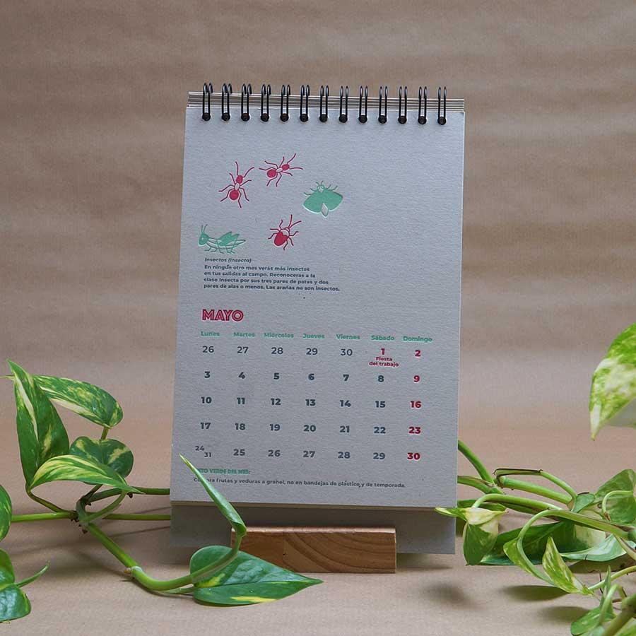 Página interior del calendario letterpress 2021, este año dedicado al medio ambiente, con curiosidades naturalistas y retos medioambientales. Mayo, el mes de los insectos