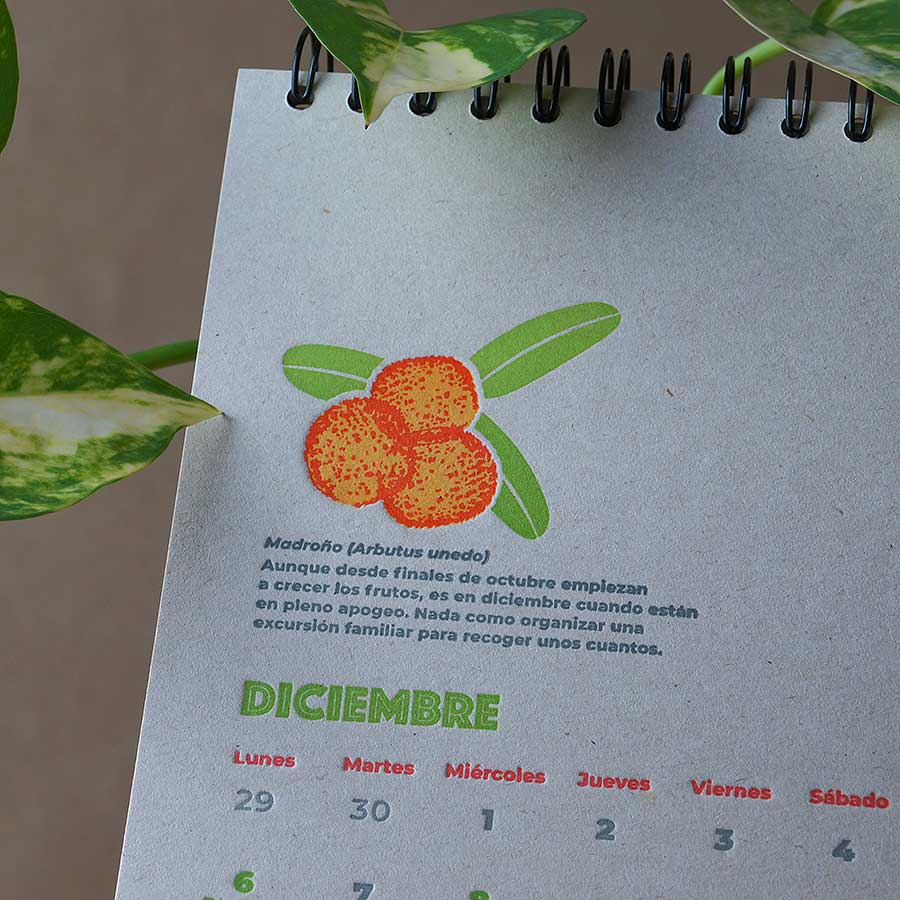 Detalle de página interior del calendario letterpress 2021, este año dedicado al medio ambiente, con curiosidades naturalistas y retos medioambientales. Un madroño impreso a tres tintas, mes de diciembre